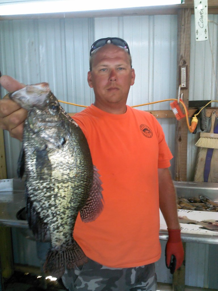 Reports rend lake fishing report best southern for Lake marion fishing report